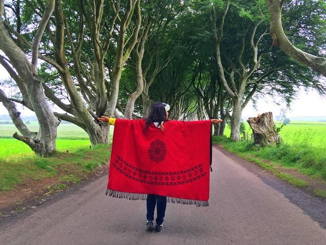 Темные изгороди - это проспект буковых деревьев вдоль Брегаг-роуд между Армой и Странокум в графстве Антрим, Северная Ирландия
